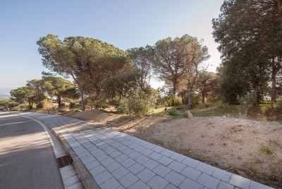 Green plot at Costa Maresme